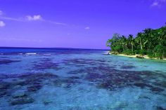 Karimun Jawa: planning a trip to this place next winter