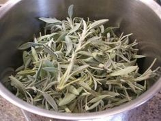 Vorrat: Salbeisirup - my list of delicious and healthy recipes Health Cleanse, Health Diet, Salvia, Detox Recipes, Healthy Recipes, Health Images, Flu Like Symptoms, Seafood Market, Yoga For Flexibility