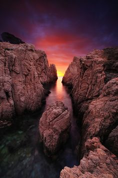 Explosion of color, costa brava, Spain   - Explore the World with Travel Nerd Nici, one Country at a Time. http://TravelNerdNici.com