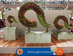 Gold Medal - Melbourne International Flower & Garden Show 2015