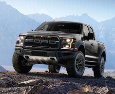 2017 Ford F-150 Raptor Pick-Up Truck (Black)