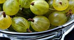 5 gooseberry recipes