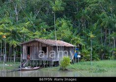 House on stilts along the Amazon River and Tropical Rainforest, Combo Island, near Belem, Para, Brazil