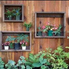 Fences serve a purpose, but they don't have to be boring. This flat plank wood fence has been accented with shadow boxes to hold container plantings. This would be a great way to add flowers to a small backyard. http://www.aldmn.com