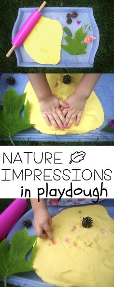 Nature Impressions in Playdough:  Such a fun outdoor activity for toddlers!