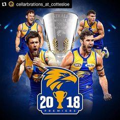 ( Congratulations to the 2018 Funny Vintage Ads, Vintage Humor, Eagles Win, West Coast Eagles, Sports Graphic Design, Western Australia, Captain America, Superhero, Doterra