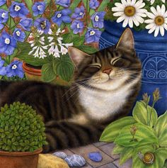illustrations by Anne Mortimer Anne Mortimer cats Cool Cats, I Love Cats, Crazy Cats, Ouvrages D'art, Cat Colors, Cat Drawing, Cat Art, Cats And Kittens, Cute Animals