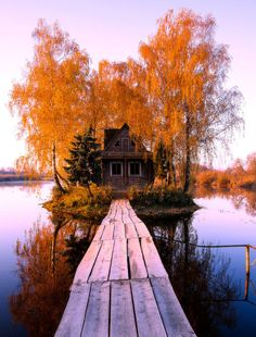 Old house on a wooden boardwalk surrounded by auburn autumn leaves and a lake Beautiful World, Beautiful Places, Beautiful Pictures, Travel Photographie, Autumn Aesthetic, Fall Pictures, Best Seasons, Hello Autumn, Autumn Leaves