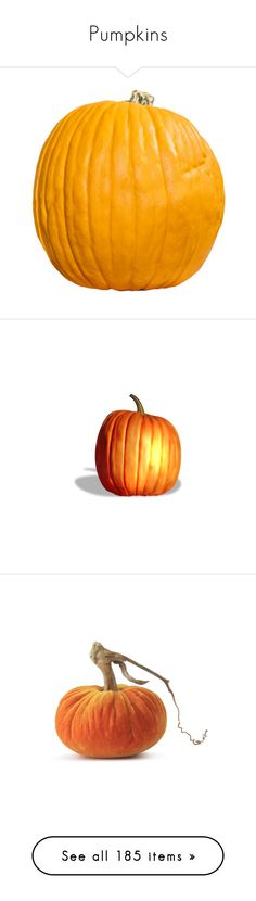 """""""Pumpkins"""" by elsiemarley22 ❤ liked on Polyvore featuring halloween, autumn, pumpkins, fall, fillers, food, backgrounds, home, home decor and pumpkin home decor"""