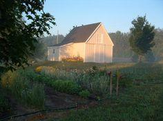 Building My Small Barn