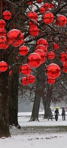 Inspiring Outdoor Christmas Decorations With Shiny Red Balls Hanging On Large Trees With Outdoor White Christmas Lights And Outdoor Lighting, Cool Ideas For Outdoor Christmas Decorations: Exterior Merry Christmas, Christmas Love, Winter Christmas, All Things Christmas, Christmas Crafts, Beautiful Christmas, Christmas Balls, Christmas Yard, Christmas Lanterns