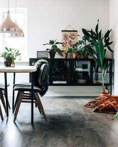 my scandinavian home: A Charming Danish Home on a Shoestring Budget