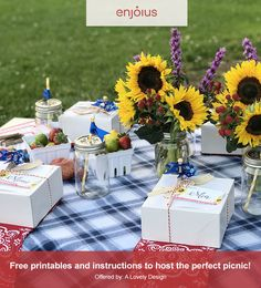 Creating a beautiful picnic has never been easier, with this free Party Plan.
