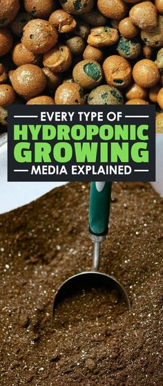 Learn the pros and cons of each type of hydroponic and plant growing media in this in-depth guide.