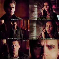 I was so shocked in this scene Raise your hand if you're excited to see ripper Stefan again! Paul Vampire Diaries, Vampire Diaries Memes, Vampire Diaries The Originals, Michael Malarkey, Michael Trevino, Stefan Salvatore, Paul Wesley, Malese Jow, Like A Storm