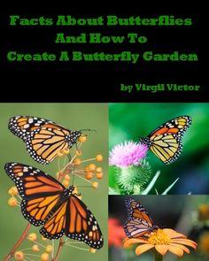 Hummingbird and Butterfly Garden Plan - PDF | Gardening ...
