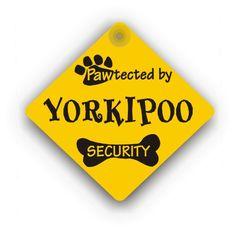 Yorkipoo Security