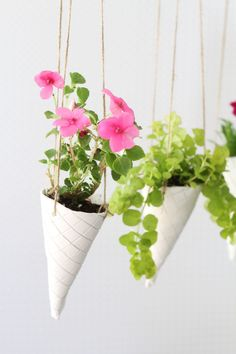 Ice Cream Cone DIY Hanging Planters What better way to usher Summer in than greeting it with waffle cone-shaped DIY hanging planters full of colorful flowers! The post Ice Cream Cone DIY Hanging Planters appeared first on Diy Flowers. Diy Hanging Planter, Diy Planters, Planter Ideas, Hanging Pots, Flower Planters, Fleurs Diy, Ideas Para Organizar, Plant Holders, Colorful Flowers