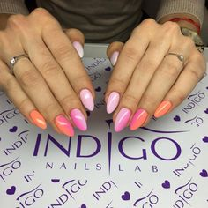Gel Polish Cuttie, Pink Pong, Little Pink + Mr.White by Indigo Educator Ania…