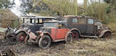 A Singer Junior four-door, a 1930 Morris Minor, foreground, and a Swift saloon, right, stand in the mud    Read more: http://www.dailymail.co.uk/news/article-1161661/Classic-British-cars-discovered-barnyard-set-fetch-thousands-auction.html#ixzz1nc0IVvQI