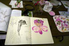 fantastic botanical artist