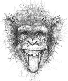 vince-low-zupi-9 Monkey Drawing, Monkey Art, Animal Drawings, Pencil Drawings, Art Drawings, Vince Low, Art Du Croquis, Art Du Monde, Monkey Tattoos