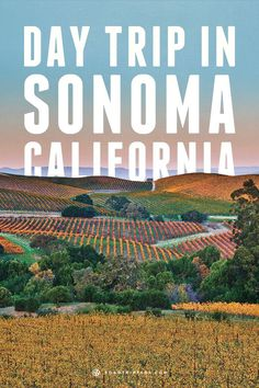 Have a day trip in Sonoma, California and explore local history and nature. #bringthekids #kidandcoe