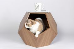 cat cave by pup and kit