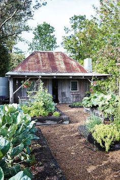 Rustic gardens, outdoor gardens, dream garden, home and garden, summer Rustic Gardens, Outdoor Gardens, Roof Gardens, Dream Garden, Home And Garden, Creole Cottage, Old Cottage, Garden Cottage, Meadow Garden