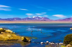 SAN PEDRO DE ATACAMA In the heart of the Atacama Desert, San Pedro is renowned for its breathtaking scenery. Explore erupting geyser fields and blue alpine lakes and watch multihued sunsets across lunar-like landscapes.