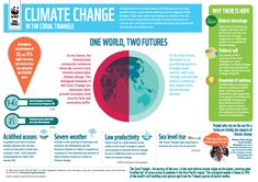 WWF - INFOGRAPHIC: Climate change in the Coral Triangle