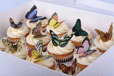 mmm che buone farfalle!