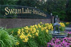 Swan Lake Images - City of Sumter, SC