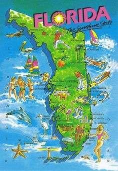 26 Sea World Florida Map Stock – cfpafirephoto.org Orlando Map, Orlando Vacation, Florida Images, Visual Resume, Seaworld Orlando, Printable Maps, United States Map, Vintage Florida, Sea World