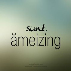 Sunt ameizing :D #romania R Words, Sweet Words, Fart Humor, Sarcastic Humor, Love Quotes, Funny Quotes, Inspirational Quotes, Travel Quotes, Favorite Quotes
