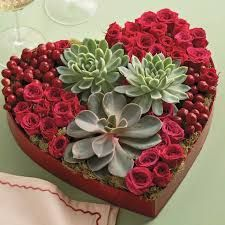 Succulent plant heart arrangement