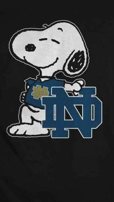 College Football Logos, Football 2013, Football Quotes, Football Season, Notre Dame Football, Alabama Football, American Football, Notre Dame Wallpaper, Notre Dame Indiana