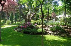 jardin en chalet de madrid