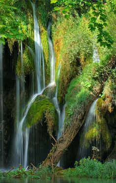 Visit Croatia � Beautiful Country at Adriatic Sea - Plitvice Lakes National Park, Croatia