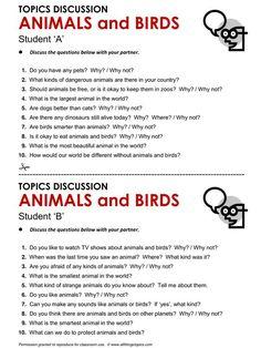 Animals and Birds, English, Learning English, Vocabulary, ESL, English Phrases…