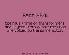 tiny facts love em lots