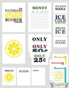 Create a lemonade stand binder- encourage hard work and entrepreneurship while having fun! Fun kids activity this summer.