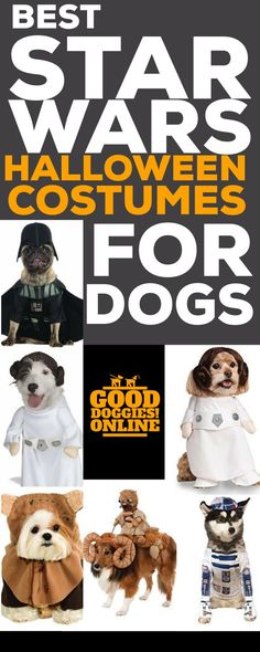 Check out these awesome Star Wars Halloween costumes for dogs. We picked out the best, but they are all funny and hilarious. #halloween #dogs #GoodDoggies