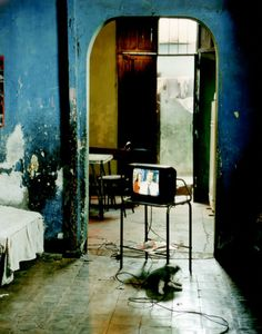 http://davewirth.blogspot.com/2012/05/watch-free-tv-online-top-10-free-tv.html  View open television shows on the net in the following. Connects and directions about how to inspect dish line videos by going online.