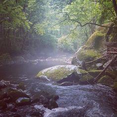 Great Smoky Mountains National Park Tennessee [OC] [29882988] http://ift.tt/2cdlrwN