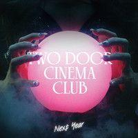 Two Door Cinema Club - Next Year (RAC remix) by Two Door Cinema Club on SoundCloud