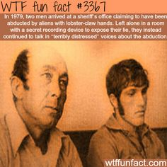 Aliens abduction stories -  WTF fun facts