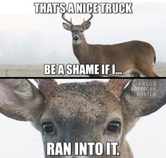 Convinced a deer thought this about my outback. Lol