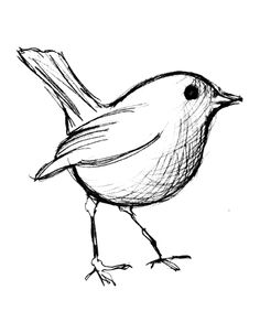 bird watching coloring pages - photo#36