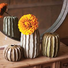 Cacto Ceramic Vases